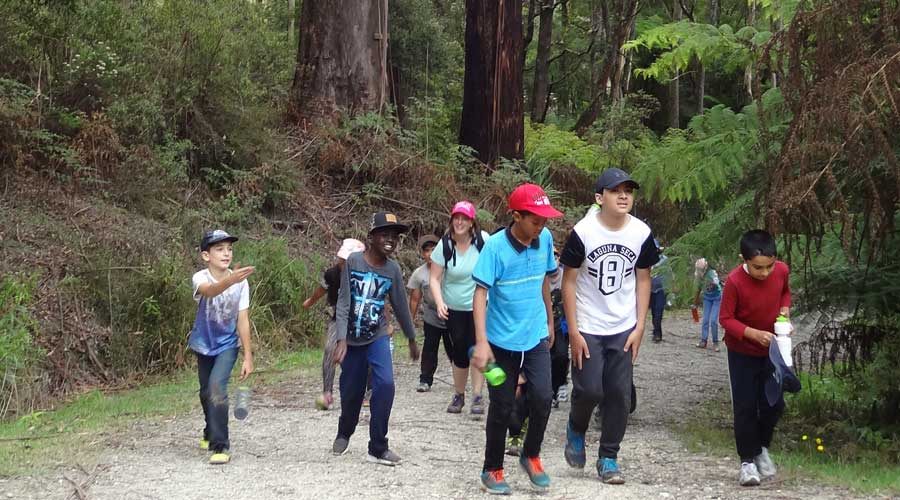 Group walking to camp
