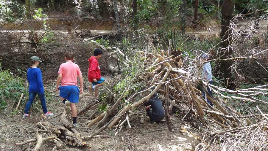 Bush camp activities